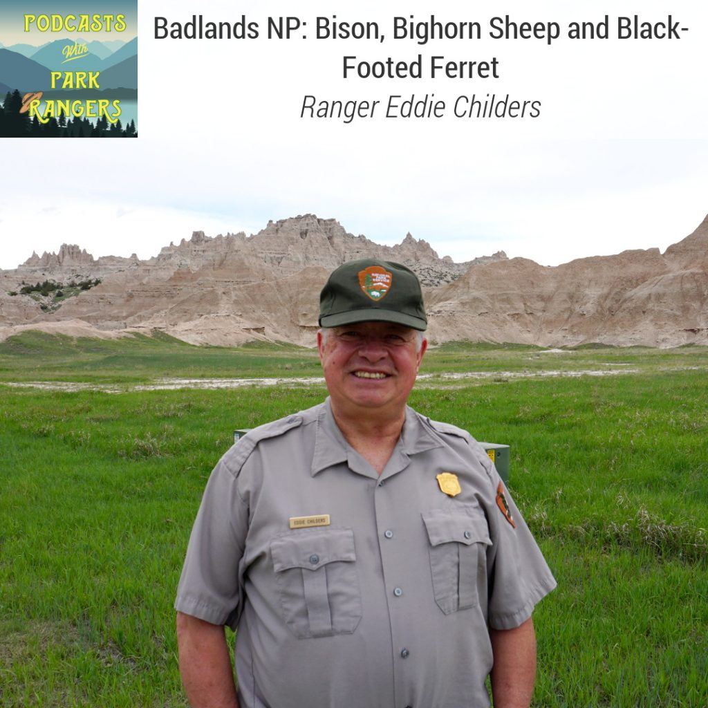 Badlands NP: Bison, Bighornsheep, and Black-footed ferret - Ranger Eddie Childers