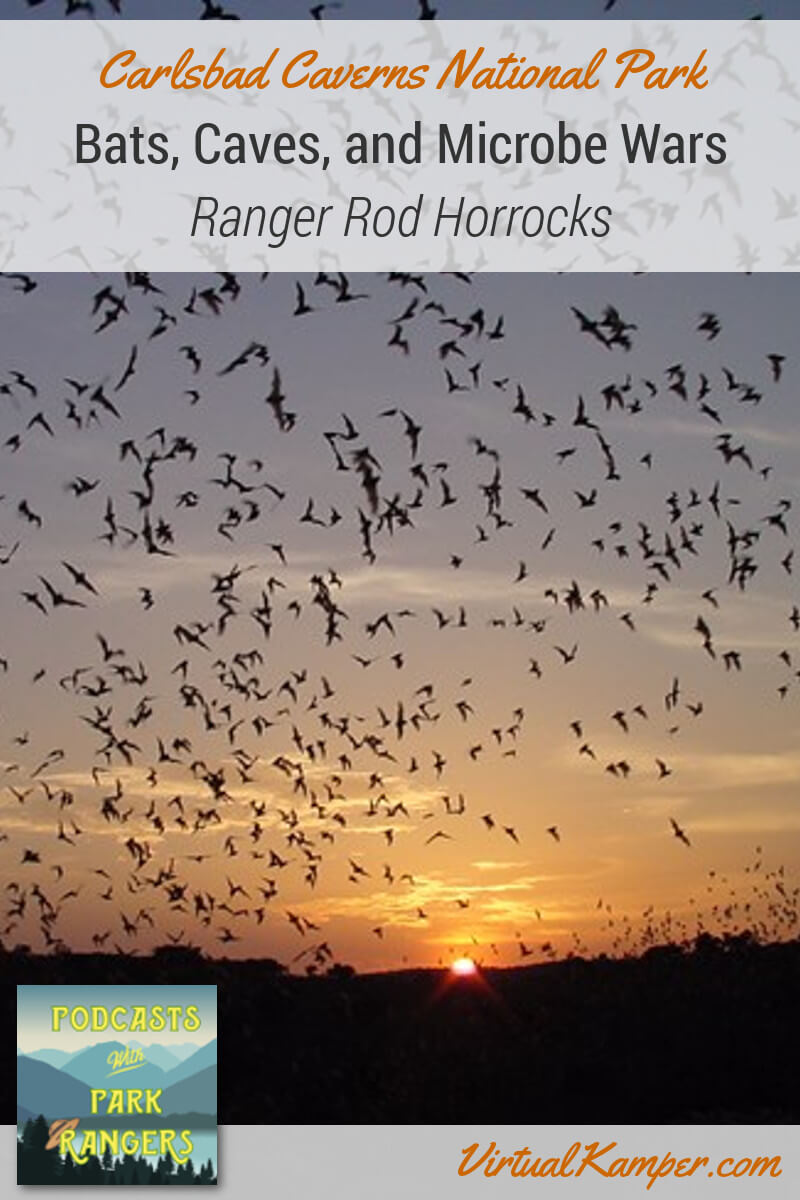 Let's talk bats, microbes and cave maps! Rod Horrocks is a Physical Scientist and the Chief of Resources Stewardship and Science at Carlsbad Caverns National Park. He loves cave management, cave exploration, and cave mapping. This episode of Podcasts with Park Rangers gets into everything related to Carlsbad Caverns research! Click through to listen.