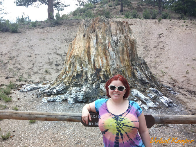 Sarah by the Big Ol' Petrified Stump
