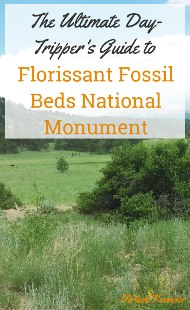 The Ultimate Day-Tripper's Guide to Florissant Fossil Beds National Monument